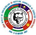 Turkic Speaking States